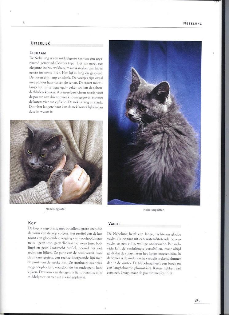 publications - Cat encyclopedia - the Netherlands -first pri 1618263198_599dbf5b72_b