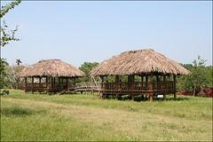吳鳳公園34