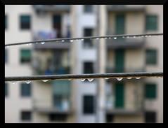novembre (amemainda) Tags: novembre palazzo pioggia fili gocce pascoli sfidephotoamatori