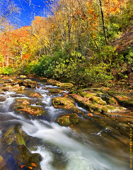 NC Stream Fall Afternoon (JamesWatkins) Tags: blue autumn orange usa color green art fall water beautiful writing wonderful watercolor landscapes nc movement flora rocks poetry fallcolors unitedstatesofamerica digitalart creative northcarolina autumnleaves autumncolors rivers streams cherokee poems blueandorange floraandfauna poets beatifulscenery waterscapes smokeymountains mountainstreams cherokeenc rocksandwater movingwater creativewriting creativewriters streamsandrivers thesmokies sigma1020 theverybest topshots toppictures watermovement riverscapes nothdr hdrnot abigfave jameswatkins anawesomeshot aplusphoto kakalak diamondclassphotographer flickrdiamond beautyofwater ysplix theunforgettablepictures brillianteyejewel platinumheartaward theperfectphotographer tup2 northcarolinarivers northcarolinastreams northcarolinaflora theverybestshots theverybestpictures jhwatkins runiningwater floraofnorthcarolina ncflora