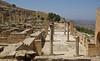 Termes de Trajà i Adrià, Cirene (1)