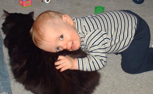 """""""Best Cat Ever....Died""""...Yep, that was Willie"""