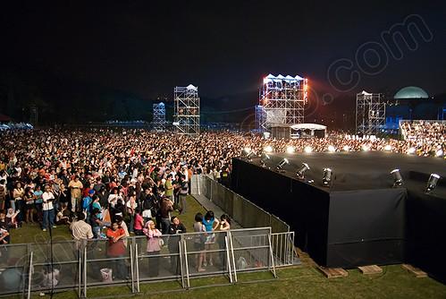 Shaggy Crowd