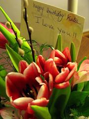 i love you tulip