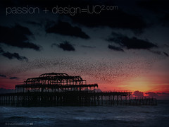 Brighton_Pier_and_Starlings_1600x1200.jpg (imjustcreative) Tags: sunset wallpaper beach landscape photography brighton coastal desktoppicture desktoppictures starlings brightonpier flockofbirds desktopphoto desktopphotos wallpaperiphotoedited