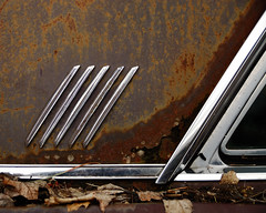 Chrome details 5283 (AIA GUY..Rwood) Tags: auto ohio abandoned leaves car yard junk bright decay neglected rusty automotive chrome reflective forsaken shinny corrosion decaying dumped delawareohio oxdiation discareded ploished