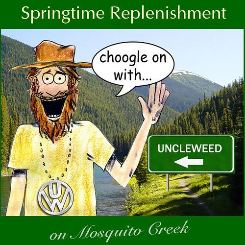 Springtime Replenishment on Mosquito Creek - Choogle on #66