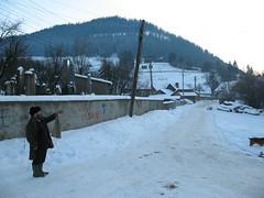 """Fotografie participanta la """"Salonul de Iarna - Iasi 2008"""""""
