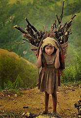 How hard is life for some.... (Mariposa de Amor ( Photo-Dream )) Tags: wood nepal portrait girl work nikon foto fotograf child diana romania himalaya porter carry cluj clujnapoca fotografa d300 18200mm blueribbonwinner firstquality supershot flickrsbest fivestarsgallery mywinners abigfave platinumphoto anawesomeshot aplusphoto diamondclassphotographer excellentphotographerawards onlythebestare excapture goldstaraward mariposadeamor articulateimages multimegashot alemdagqualityonlyclub alemdaggoldenaward wwwphotodreamblogspotcom lightiq vasloban