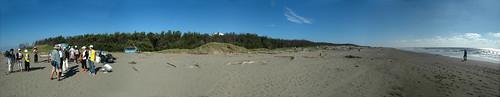 七股潟湖的外圍沙洲每年退縮20~25公尺,幾年下來達300公尺。