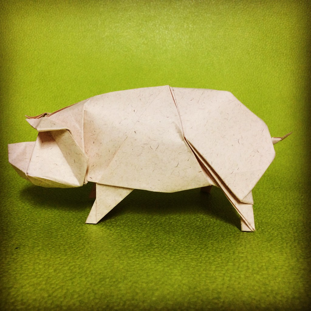 The World's Best Photos of origami and pig - Flickr Hive Mind - photo#20