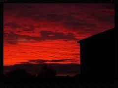 Sunset on Mike's organic farm (Zelda Wynn) Tags: sunset red sky nature weather clouds barn bright farm nz palmerstonnorth cloudscape troposphere manawatu konicaminoltadimagea2 nzfm zeldawynn zeldawynnphotography
