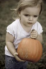 Lexi Pumpkin 2