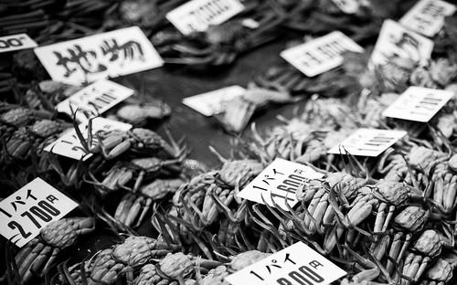 flickr joint-5.jpg