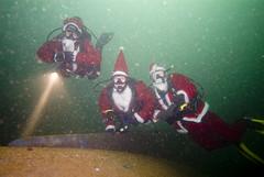 Santa divers :)