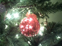 from our tree