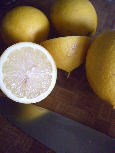 Lemons! Fresh from my tree