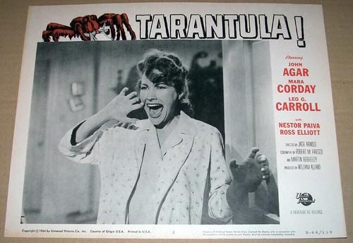 tarantula_lc5