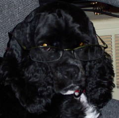 Maggie with Glasses