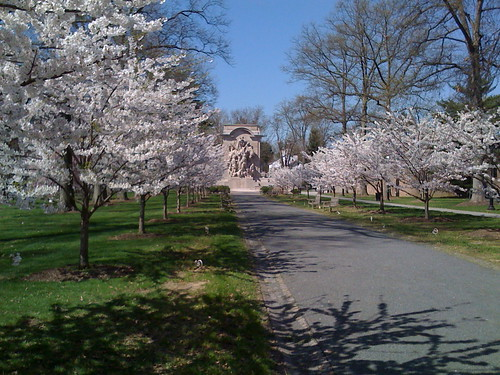 Princeton In The Spring