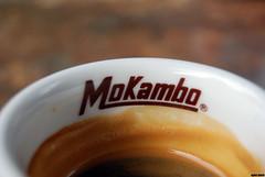 14.05.2009 (Ogami Sensei) Tags: italy cup coffee bar nikon italia caffè abruzzo cafè pescara d60