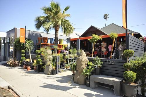 Grow Abbot Kinney Gardening Store Yo Venice