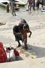 Father & Son 1.6 Varanasi (amiableguyforyou) Tags: india men up river underwear varanasi bathing dhoti oldmen ganges banaras benaras suriya uttarpradesh ritualbath hindus panche bathingghats ritualbathing langoti dhotar langota