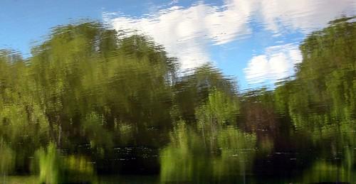 impression on a pond