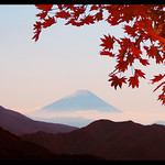 Mt. Fuji of autumn