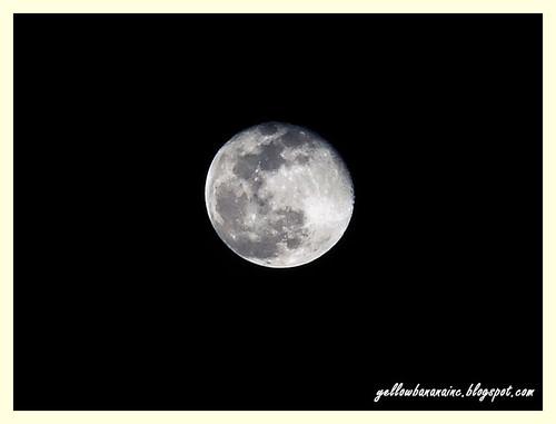 moon03
