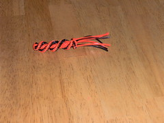 IM000220 (Kristen Lash) Tags: crafts boondoggle scoubidou