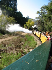 IMG_0419 (trimgauge) Tags: steam shay narrow guage