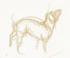 Crufts08-07