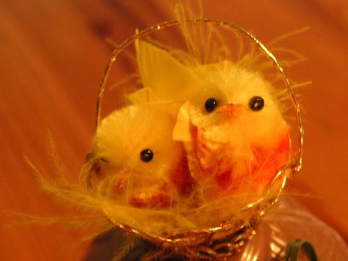 Easter egg decoration, no flash