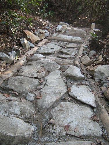 Appalachan Trail Armoring(Burnt MTn 04/08)