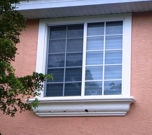 Bonita springs home damage