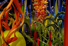 Chihuly (Thad Roan - Bridgepix) Tags: sanfrancisco california chihuly art glass museum exhibit explore deyoung finearts 200809