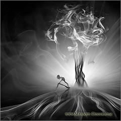 Smoke Works - 26 - Infinite dreams (jodhyvalgaleste) Tags: smokeworks smokeart mehmetozgur reston 20191 usa