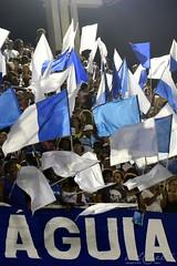 ET Port 170212 002 Torcida bandeiras águia (Valéria del Cueto) Tags: portela ensaiotécnico bateria escoladesamba riodejaneiro samba sapucaí sambódromodarciribeiro apoteose carnaval carnival carnevaleriocom carnevaledirio valériadelcueto azul brasil brazil águia bandeira