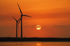 Sunset at Gaomei Wetland|高美濕地 (里卡豆) Tags: sunset dusk olympus penf 台灣 taiwan beach 海灘 夕陽 黃昏 日落 海 sea 75300mmii f4867 75300mmf4867ii