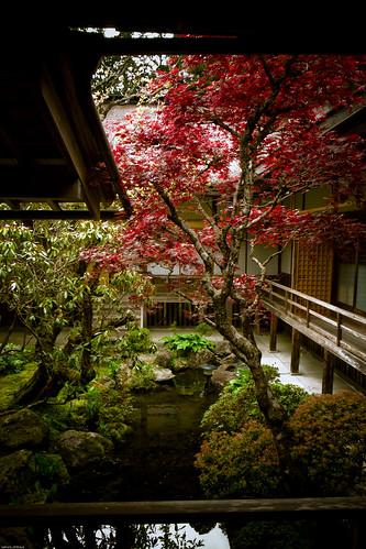 R0015069 : Another Garden 1  -Kongobuji Temple #8-