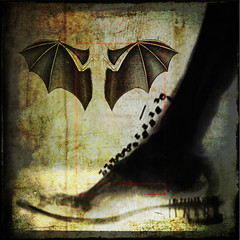x ray speculations (Misanthropic Empath) Tags: collage shoe textures xray montage layers batwings palabra hourofthediamondlight