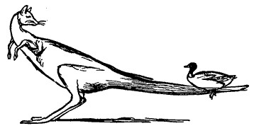 Duck and Kangeroo Edward Lear
