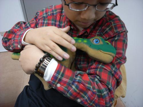 Vista照顧小圓頂恐龍