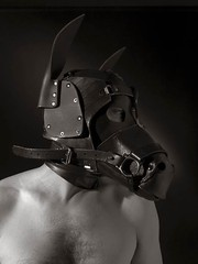 Mask (Evan Shorrock) Tags: horse leather mask bondage