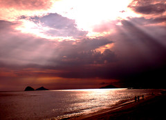 Another sunset to say happy sunday!!! (Animal Photo) Tags: sunset brazil prdosol blueribbonwinner supershot boissucanga diamondclassphotographer flickrdiamond julianafraguas