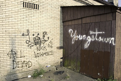 all dead (Sean  Posey) Tags: ohio abandoned broken ruins fineart forgotten youngstown rustbelt steelmills