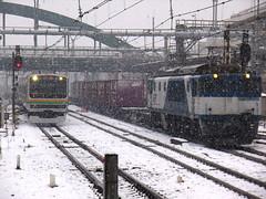 カモレ&E231系
