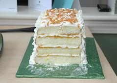 JaneAnn-10 Cut-Cake