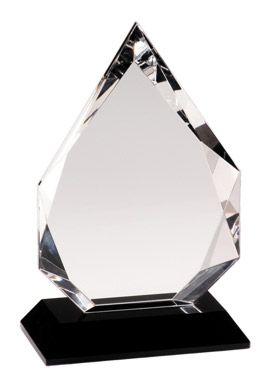 crystal award from Bux-Mont Awards